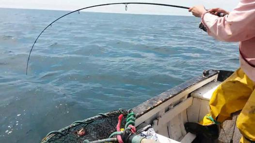 peche en mer