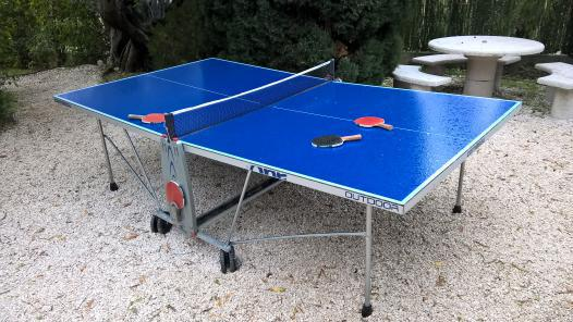 table ping pong occasion